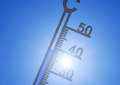 Potenzial von WH67® und EVO-AMARIS® bei Hitzestress